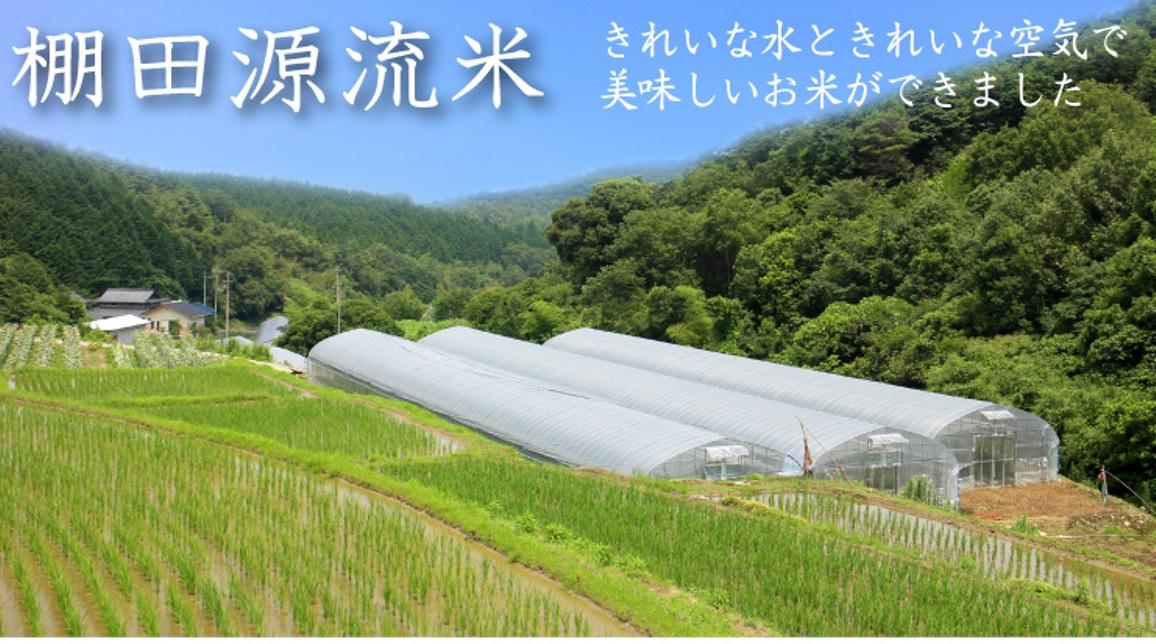 きれいな空気ときれいな空気で美味しいお米ができました