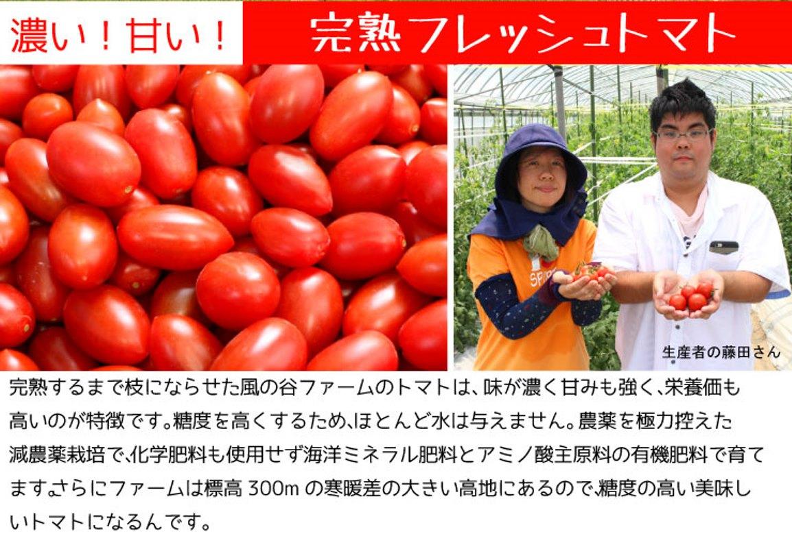 濃い!甘い!完熟フレッシュトマト