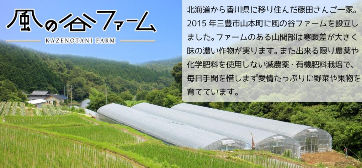 風の谷ファーム 寒暖差の大きい山間部で美味しい野菜やフルーツを作っています