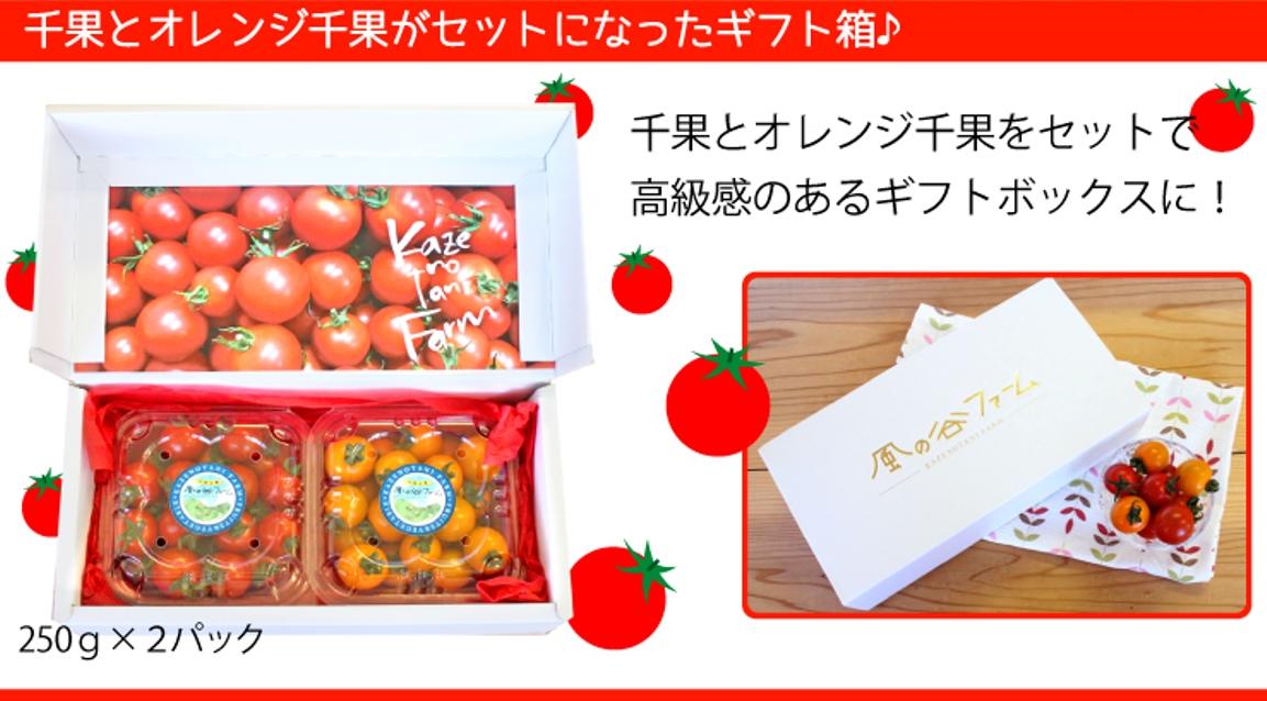 千果とオレンジ千果をセットにしたギフト箱