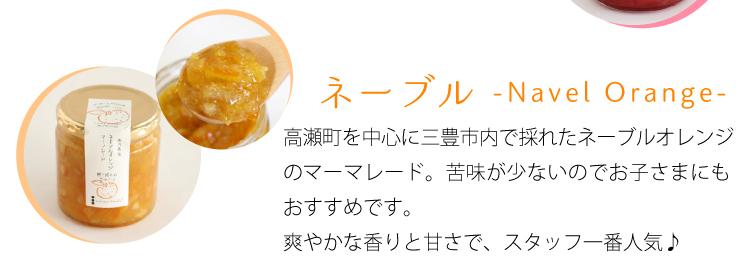 ネーブルマーマレード 酸味が少なく爽やかな香りと甘さでスタッフ一番人気