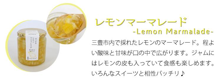 レモンマーマレード 程よい酸味で色んなスーツと相性バッチリ