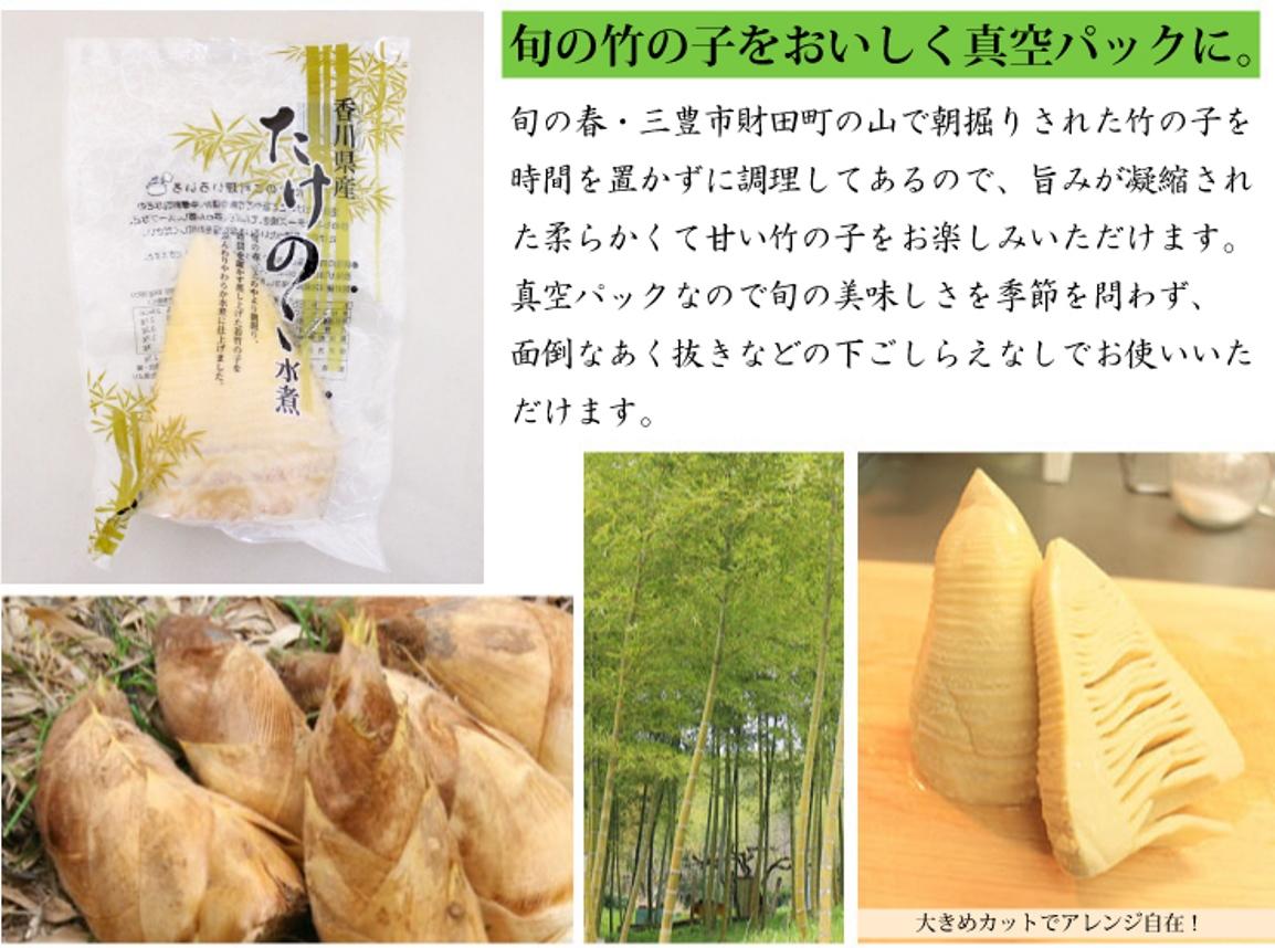 三豊市財田町で採れた朝掘りの竹の子。旬の美味しさを真空パックで。
