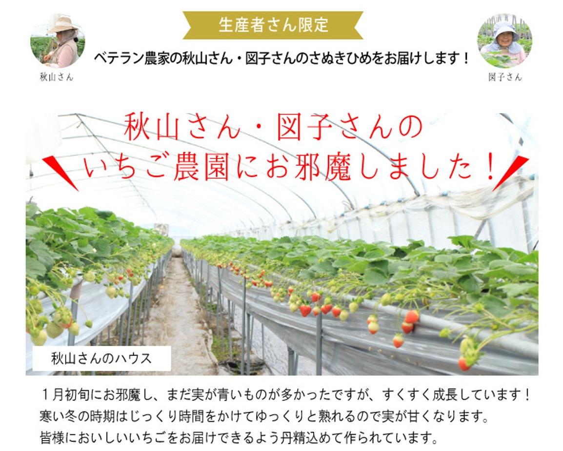 秋山さんと図子さんのいちご農園におじゃましました。寒い時期はじっくり時間をかけてゆっくりと熟れるので、実がより一層甘くなります。