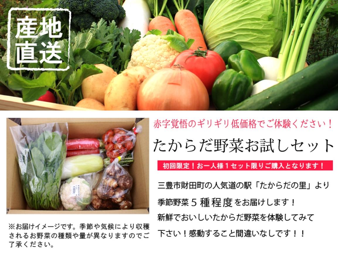 赤字覚悟のギリギリ価格!初回限定お一人様1セット限りご購入可能です。5種類程度のお野菜を詰め合わせてお届けします。
