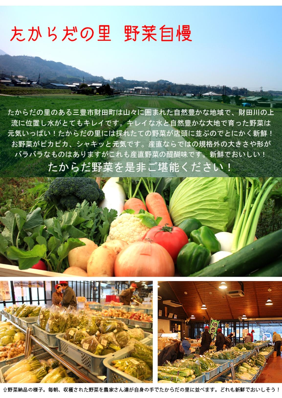 たからだの里のある財田町。綺麗な水と大地でピカピカ、シャキっと元気な野菜が育ちます。